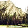 Banff Diaries: a postlude