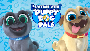 Playtime With Puppy Dog Pals thumbnail