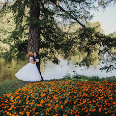 Wedding photographer Anna Bushueva (ladie). Photo of 11.11.2014