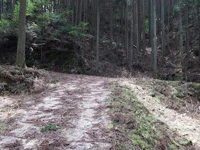 T字路を左へ(右は荷坂集落)