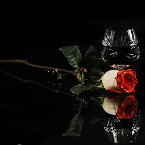 Cognac and Rose by Cristobal Garciaferro Rubio - Artistic Objects Cups, Plates & Utensils ( rose, reflection, white rose, cognac, leaves, pwcmirror-dq )