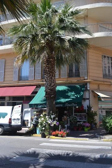 Пальма в Жуан-ле-Пен