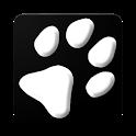 Camera Cards icon