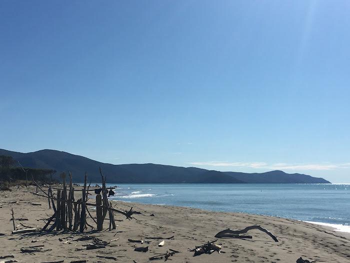 I capanni di legni a Marina di Alberese