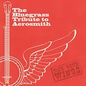 The Bluegrass Tribute to Aerosmith