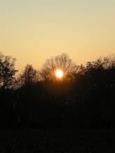 Photo: evening walk