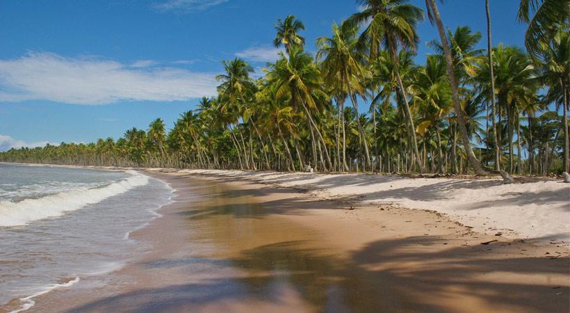 Ilha de Boipeba.jpg