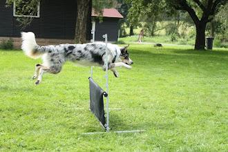 Photo: jump