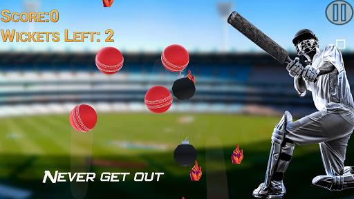 Hit Cricket - Mobile Premier League 1.1 screenshots 2