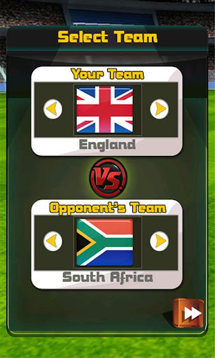 England Vs South Africa Cricket Game 1.1 screenshots 2