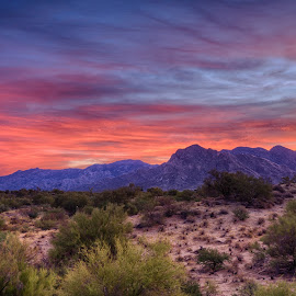 Red Mountain by Charlie Alolkoy - Landscapes Mountains & Hills ( desert, sunset, arizona, tucson, sunrise, landscape )