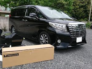 アルファード  Executive Lounge V6 3.5Lのカスタム事例画像 Tsuru -長渕ファン-さんの2019年05月06日21:53の投稿