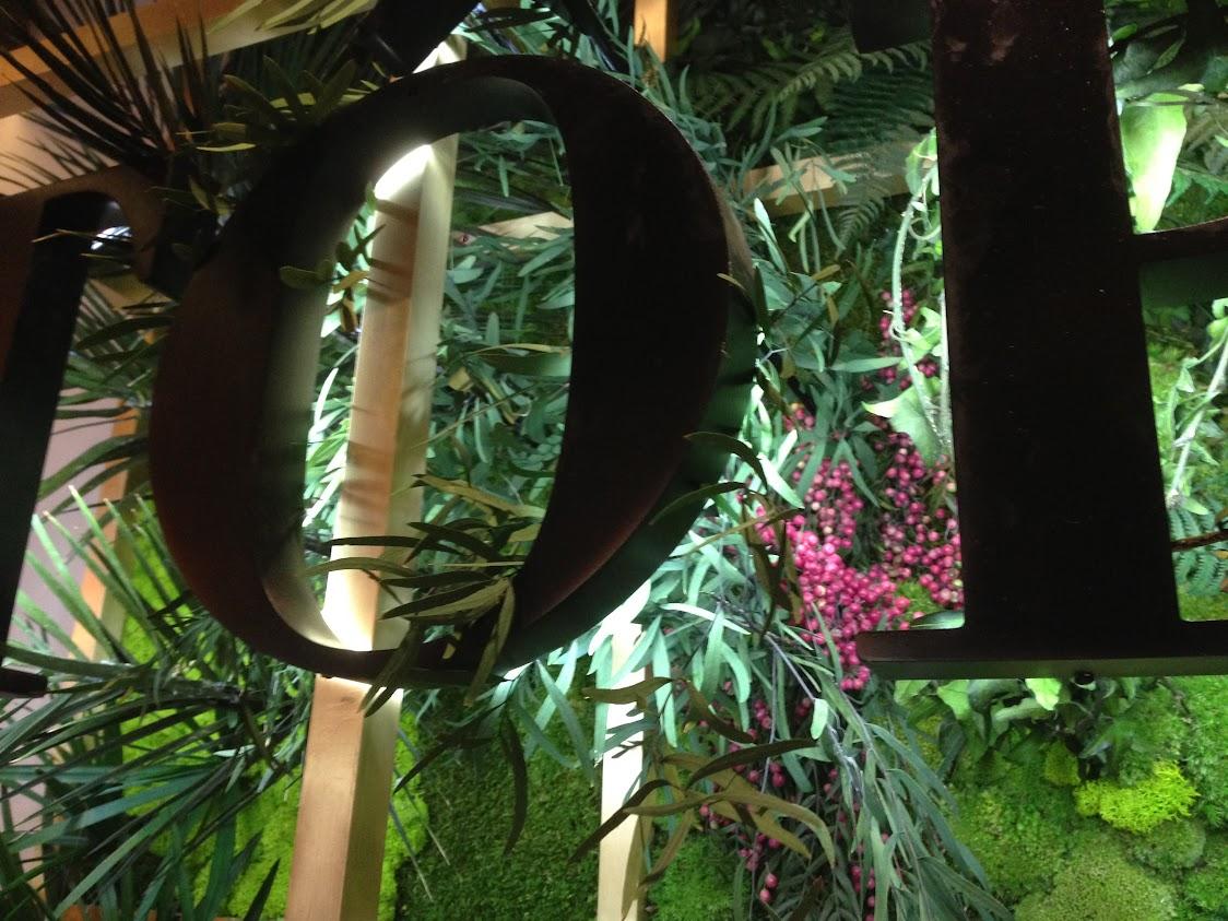 Vista frontal del jardín vertical en la que podemos ver palmeras