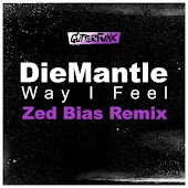 Way I Feel (Zed Bias Remix)