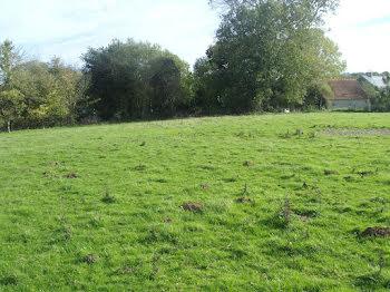 terrain à Bray la campagne (14)