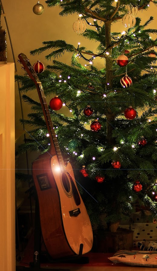 Guitar & Christmas Tree by Almas Bavcic - Public Holidays Christmas