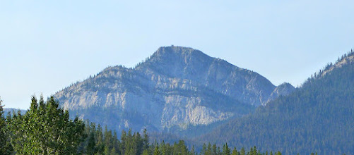 Photo: Here is a zoom shot of the Patrol Mountain Lookout (photo taken near the trailhead).