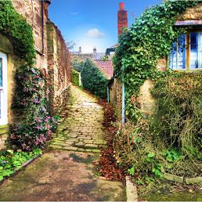 Cottage lane. by BethSheba Ashe - City,  Street & Park  Street Scenes ( brick, moss, pwcdetails, stone, windows, ivy, lane, country, corbridge, cottage, path, chimney, paving )