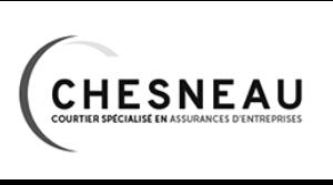 Why - Raison d'être sociétale des entreprises et des dirigeants - Valorisation métier - Valorisation des salariés - Développer la fierté d'appartenance des collaborateurs - Thomas Chesneau - Dirigeant du Cabinet de courtage en assurance d'entreprise Chesneau - Nantes 44 Pays de la Loire