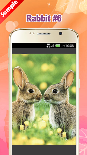 玩免費娛樂APP|下載Cute Rabbit Wallpaper app不用錢|硬是要APP