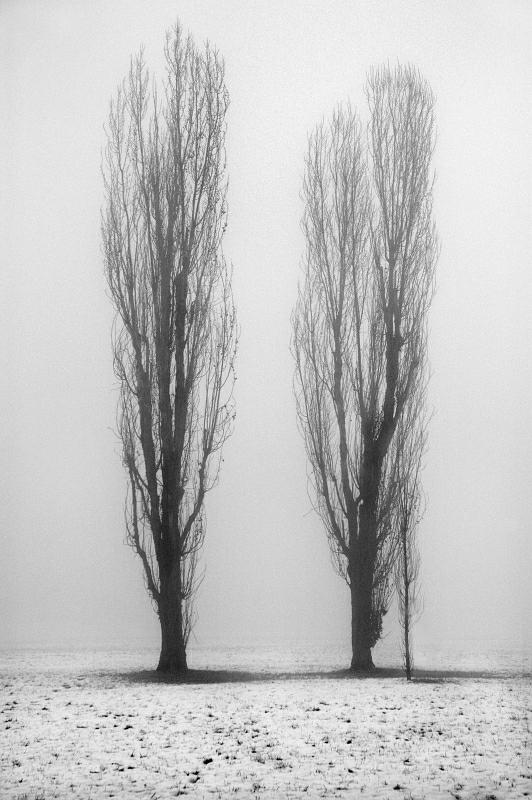 Coppia con figlio. di Paolo Zanoni