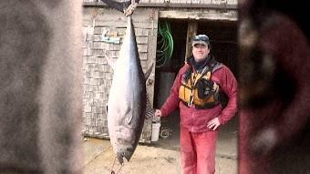 Wickeder Tuna