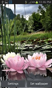 Nature Lotus Flower LWP screenshot 0
