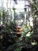 Photo: There's a neat fountain and pond in the Jungle Room. It reminded me of the Jungle Cruise Ride at Disneyland...