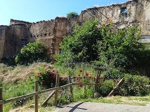 Photo: Les ruines de Ruesta