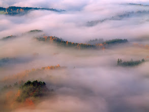 Photo: Czech Switzerland, Czech Republic  The early morning shootout in the national park of Czech Switzerland has emerged into a long lens session thanks to lots of mist in the valley. In search for some order in sceneries presented, I was actually missing a longer lens that would allow even more intimate details I could have seen from above. Good old DSLR times - this was shot on Velvia 50 transparency film with my Hasselblad H1 and 210mm. Hope you will enjoy anyway. :-)