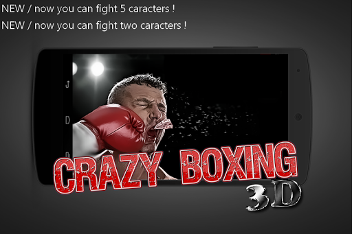 Crazy Boxing 3D