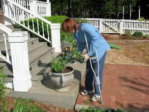 Photo: That's dedication when you garden on crutches.
