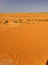 Photo: Sand removed Mauritania