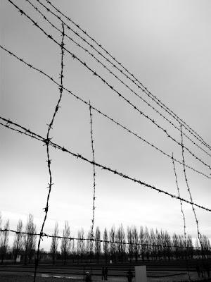 follia di arch. marco stacchini