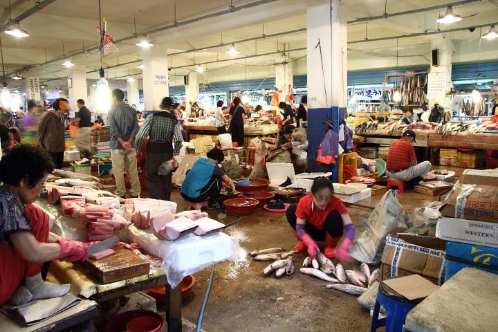 Judko Market di Sergio Acerbi