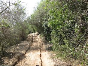 Photo: Zufahrt nach Mabibi am Lake Sibaya entlang.