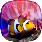 Ocean Fish Live Wallpaper  Animated Aquarium icon