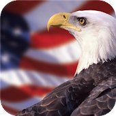 American Eagle. Live wallpaper