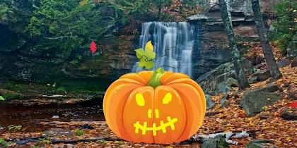 Carve a Pumpkin for Halloween! - screenshot thumbnail 02