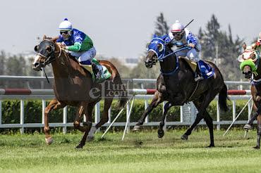 Ciara (Caesarion) gana Handicap (1000m-Pasto-CHS).