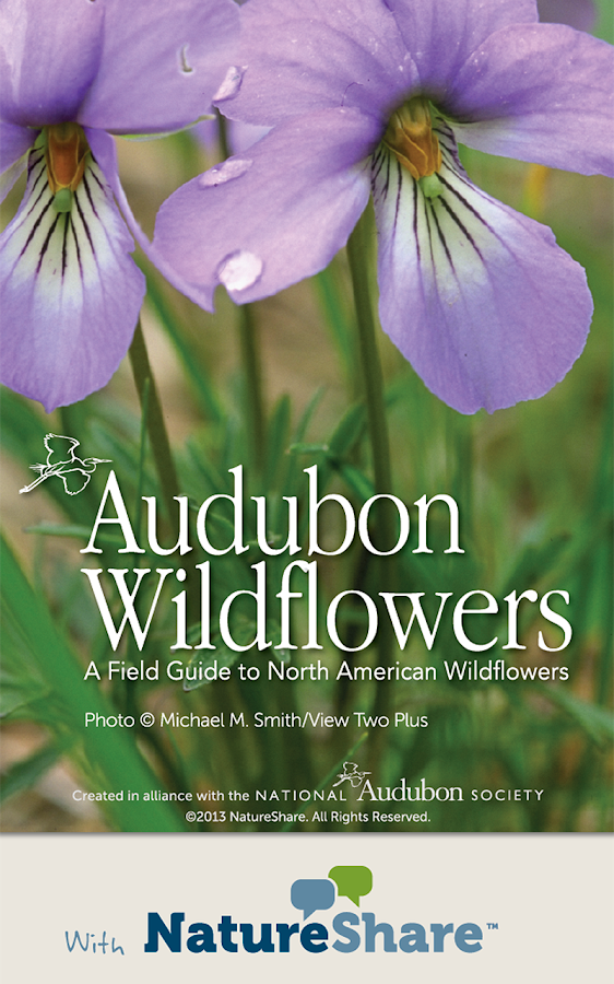 Audubon Wildflowers- screenshot