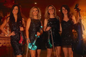 Live Musician Services In Hertfordshire | Platinum Disco