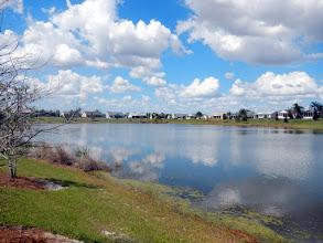 Photo: Odell Pond, 1:46, Some Algae