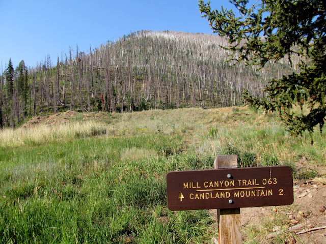 Mill Canyon Trailhead