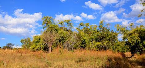 Photo: Bumilayinga - Nyawenzi