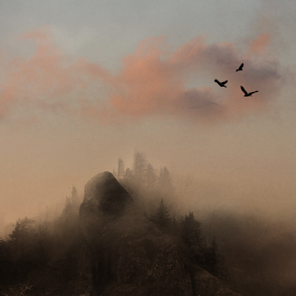 Morning mist by Kathy Dee - Instagram & Mobile iPhone ( clouds, mountains, sky, nature, sunset, sunrise, mist )