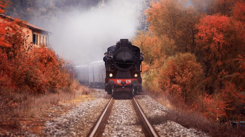 Treno a vapore di Simonetti Andrea