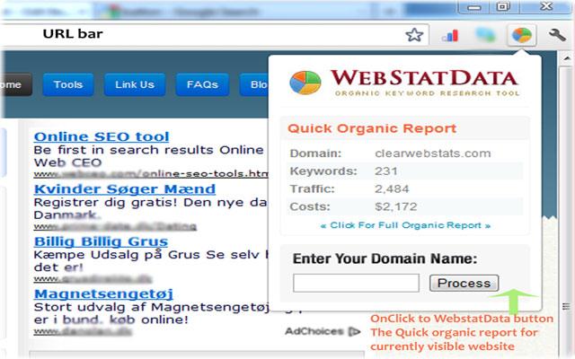 WebStatData Organic Report