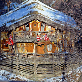 Winter home by Ciprian Apetrei - Buildings & Architecture Homes ( snow, winter, romania, building, architecture )