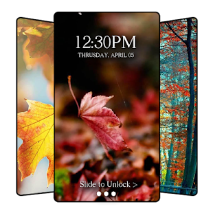 Fall Hd Wallpaper Apps On Google Play